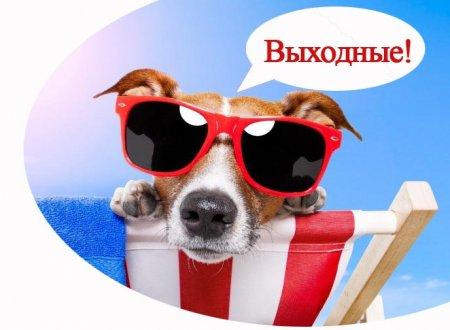 Выходные и праздничные дни в России в 2017 году: как отдыхаем в 2017 году, как отдыхаем в мае
