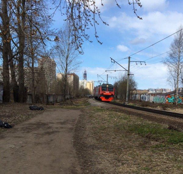 Поезд насмерть сбил парня на станции «Старая деревня» в Петербурге