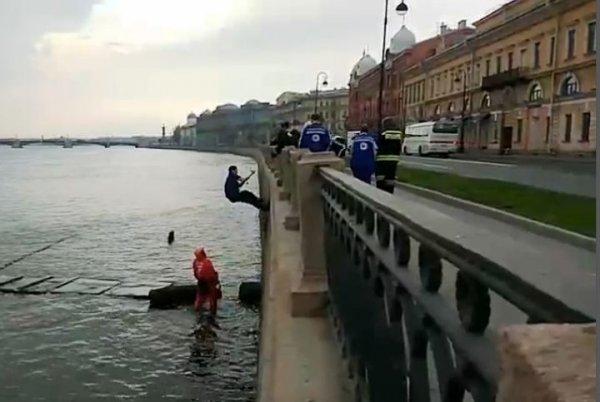 Петербуржец спас из Невы упавшую в воду пьяную девушку