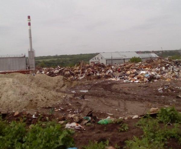 В Ростове разыскивают виновников в образовании свалки на Зеленом острове