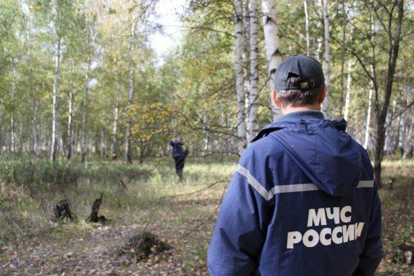 В Краснодарском крае ищут 12-летнюю школьницу