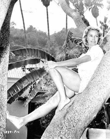 В США на 94-году жизни умерла актриса Дина Мэрилл: биография, причина смерти