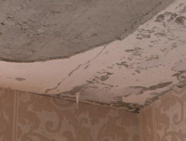 В Тульской школе обвалился потолок просто во время урока в кабинете младших учеников