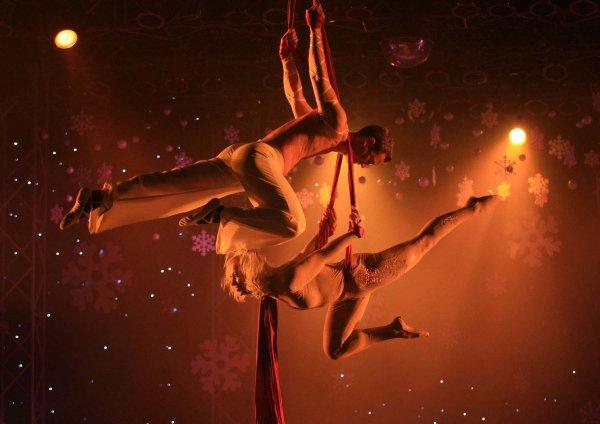 В Москве циркачка после неудачного трюка попала в реанимацию