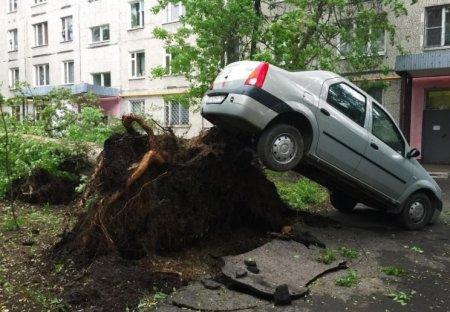 Жуткий ураган в Москве 29 мая «взорвал» интернет: ФОТО, ВИДЕО