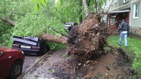 В Москве и области от урагана 29 мая погибли 14 человек: семьям погибших выплатят по миллиону рублей