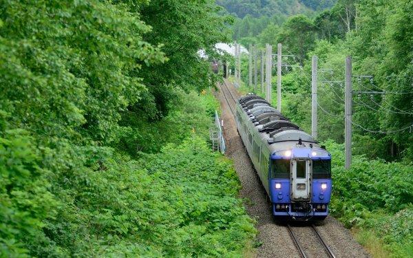 В Подмосковье поезд сбил насмерть 21-летнюю девушку с ребенком