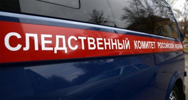 В Красноярском крае от неизвестного вируса умерла 2-летняя девочка