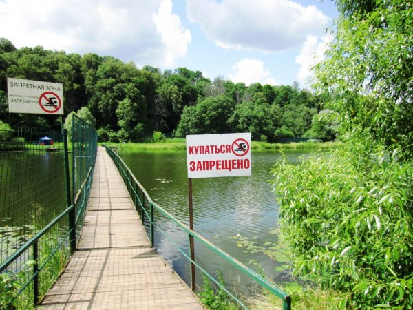 В Москве после третьего прыжка в воду утонул мужчина