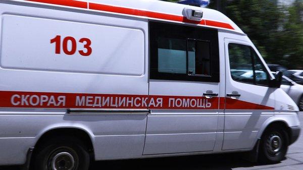 В ДТП под Нижним Новгородом погибли 4 человека