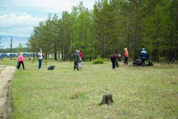 В Коми волонтеры провели уборку на кладбище домашних животных