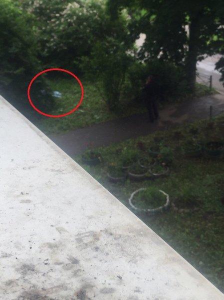 В Петербурге на Трамвайном проспекте обнаружили труп