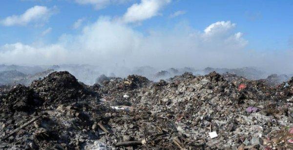 В деревне Подмосковья из-за мусора повысился уровень радиации