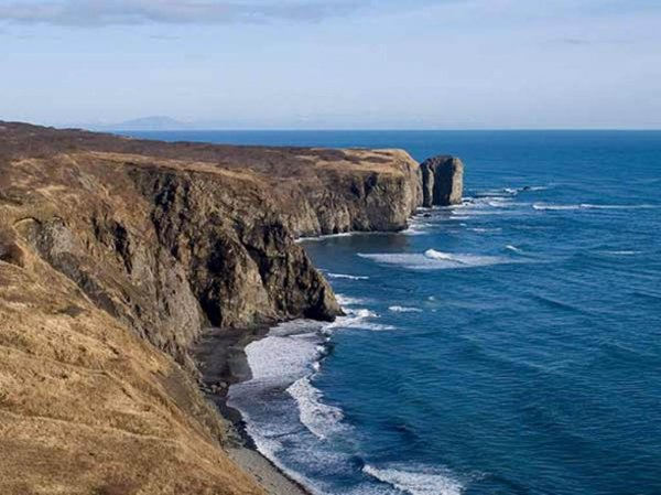 Возле берегов Камчатки задержали браконьерское судно с семью тоннами краба