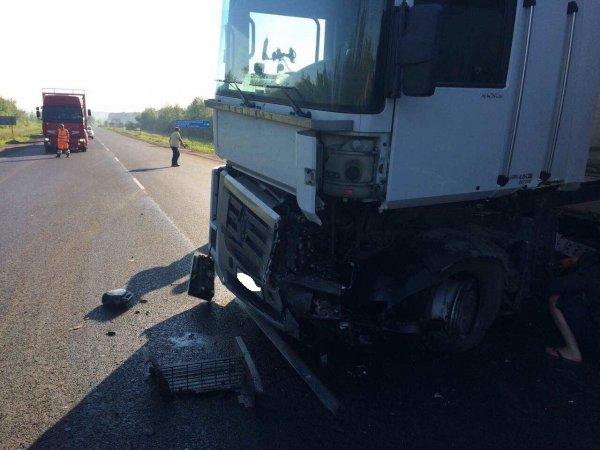 В Самарской области в аварии погибли четыре человека