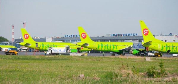 Пассажир самолета российской авиакомпании S7 сломал зуб, откусив бутерброд
