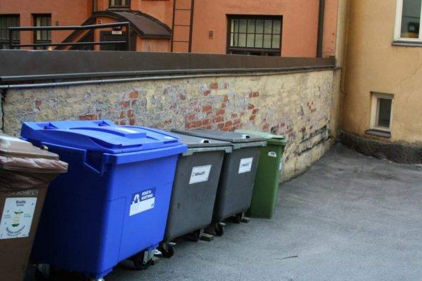 В Новосибирске около мусорных баков нашли колбу с зародышем