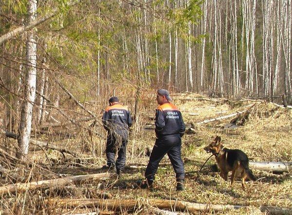 После исчезновения девочки в тайге возбуждено уголовное дело об убийстве