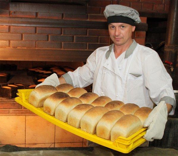 В Волгограде закрыли пекарню, полную тараканов