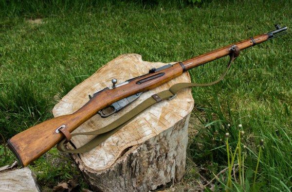 Рыбак при помощи магнита выловил из Москвы-реки винтовку Мосина