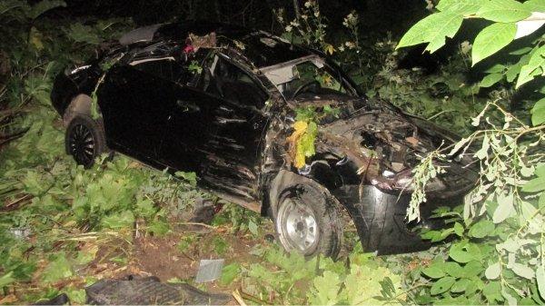 В ДТП около Тульской области скончалась 4-летняя девочка
