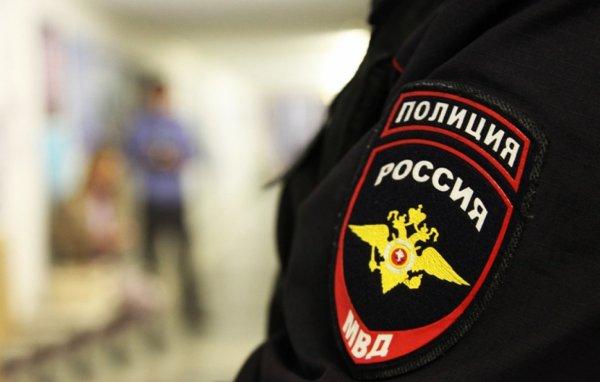 В Москве полиция задержала скрывшегося водителя, сбившего ребёнка