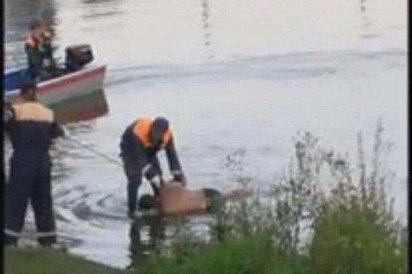 В Кемеровском районе на озере всплыл труп мужчины