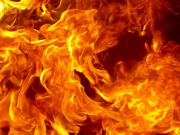 Нежилой дом с мужчиной внутри сгорел в Тверской области