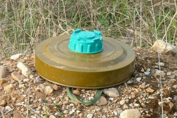 В Хабаровске рядом с детсадом найдены учебные мины и порох