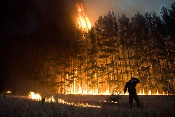 Природные пожары в Ростовской области тушат с помощью самолетов и вертолетов МЧС