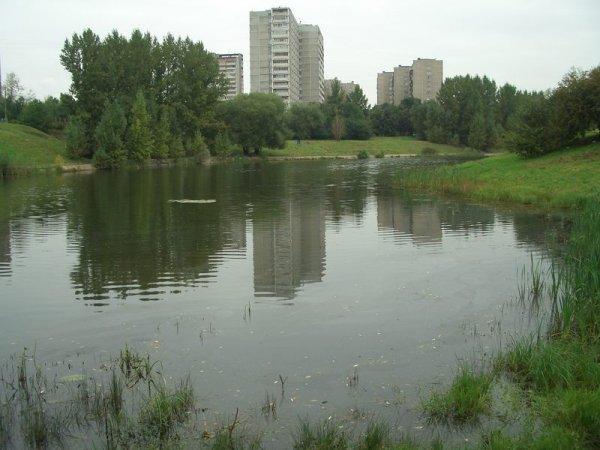 На западе Москвы в пруду утонул школьник