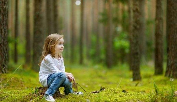 Полиция нашла в лесу под Челябинском трехлетнюю девочку-