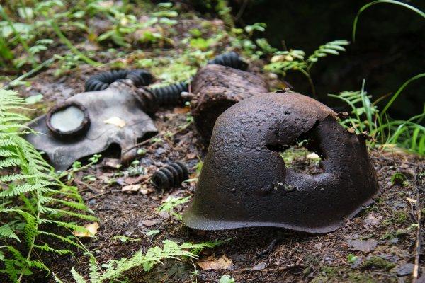 В Карелии обнаружены останки финских солдат