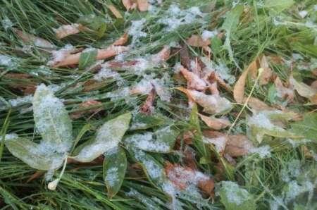 Снег и град выпали в Красноярске 9 сентября. ФОТО