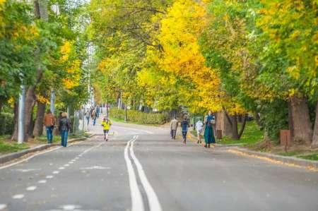 Прогноз погоды от Гидрометцентра: Бабье лето задержится в Москве на неделю