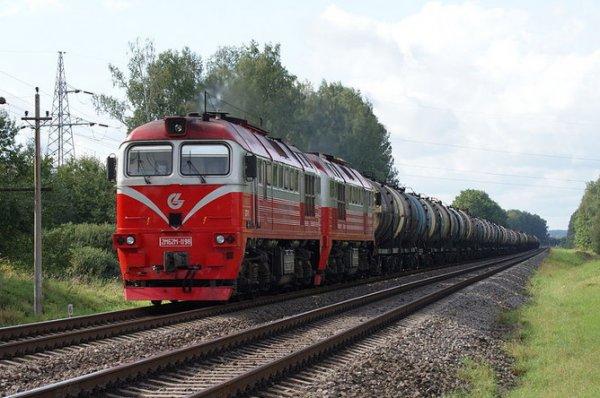 Мужчина и женщина погибли под колесами грузового поезда в Ростовской области