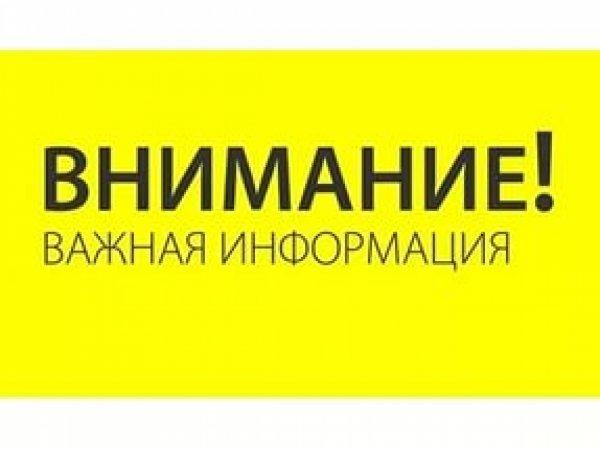 Волонтеры в Воронеже нашли пропавшую девушку
