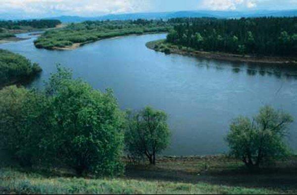 Под Томском на реке Обь опрокинулась лодка с пятью пассажирами на борту