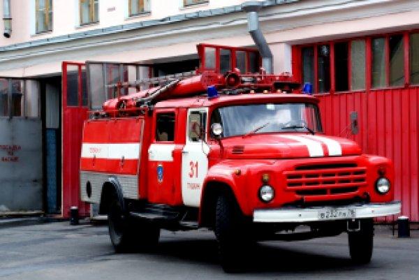 В Новгородской области в результате пожара в жилом доме  лишились жизни мать и трое детей