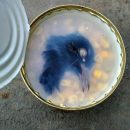Голову голубя в банке кукурузы нашла жительница Белгорода