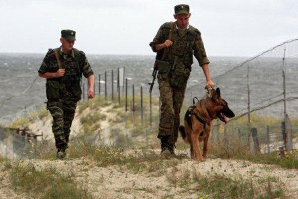 Украинские пограничники натравили собак на наблюдателей ОБСЕ