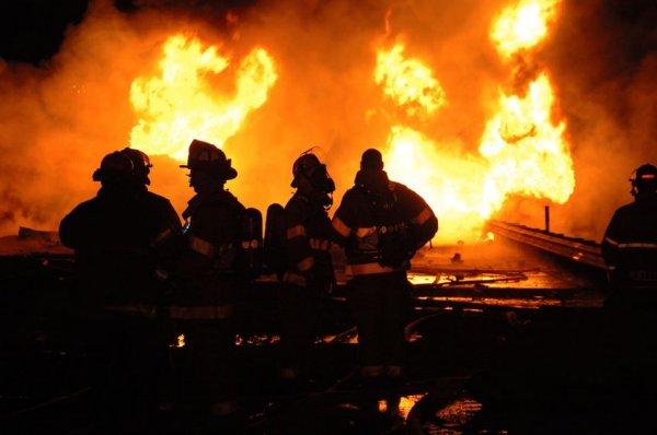 В центре Москвы загорелся сад «Аквариум»