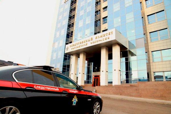 Житель Челябинска расчленил тело матери с целью получать за нее пенсию
