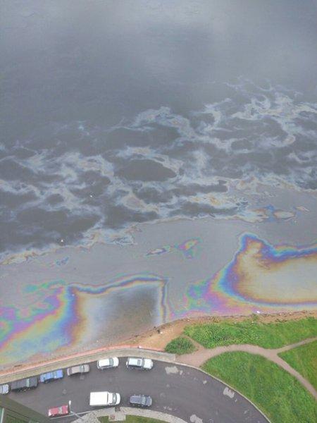 Прокуратура Петербурга проверяет разлив нефти в устье Славянки
