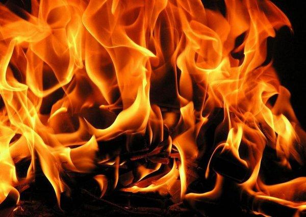Появилось видео с крупного пожара на строительном рынке «Синдика» в Москве
