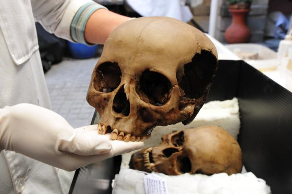 Полиция проверяет 50-летний скелет, который откопали на территории столичной клиники