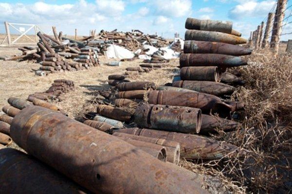 Члены поискового отряда нашли в Ленобласти склад боеприпасов времен ВОВ