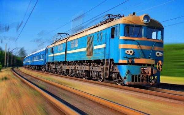 Очевидец рассказал о найденной опасной змее в поезде Владивосток-Москва