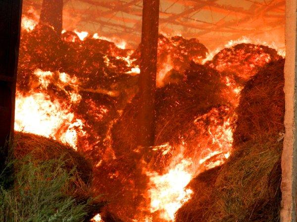 В Кувандыке пьяница сжёг 8 тонн сена, чтобы погреться