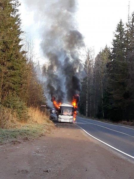 Рейсовый автобус с пассажирами сгорел на трассе в Ленобласти